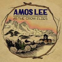 Simple Things Amos Lee MP3