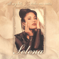 Disco Medley: I Will Survive / Funky Town / Last Dance / The Hustle / On the Radio Selena MP3