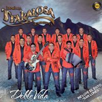 Después de Tí No Hay Nada Edwin Luna y La Trakalosa de Monterrey MP3