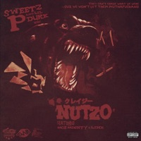 Nutzo (feat. Lil Durk, M.O.E. Mighty & Link) - Single - Sweetz P. mp3 download