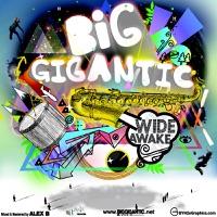 Wide Awake - Big Gigantic mp3 download