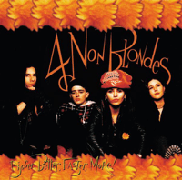 What's Up 4 Non Blondes MP3