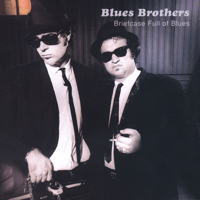 Soul Man The Blues Brothers MP3