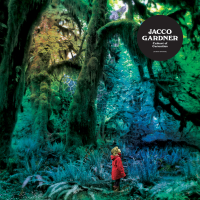 Watching the Moon Jacco Gardner
