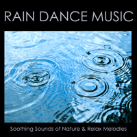 Mindful Meditations Rainforest Music Lullabies Ensemble MP3