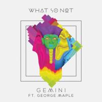 Gemini What So Not