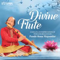 Raghupati Raghav Raja Ram (Instrumental) Ronu Majumdar & Sai Madhukar