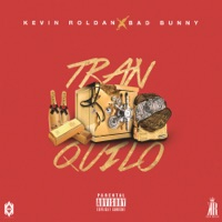 Tranquilo (feat. Bad Bunny) - Single - Kevin Roldán mp3 download