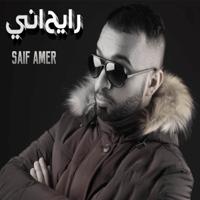 Habibi Saif Amer