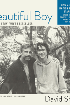 Beautiful Boy: A Father's Journey Through His Son's Meth Addiction - David Sheff