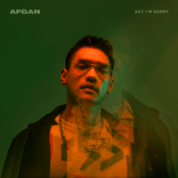 Afgan - say i'm sorry