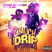 2 Much Drip (feat. Lil Baby) - Single - Dopeboy Herron mp3 download