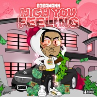 High You Feeling - Single - Sosamann mp3 download