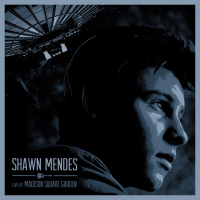 -Live at Madison Square Garden - Shawn Mendes mp3 download