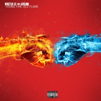 Young Fire, Old Flame - Wretch 32 & Avelino mp3 download