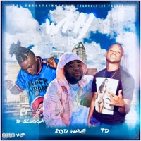 Why (feat. TD & Rod Wave) - Single - D-Slugga mp3 download
