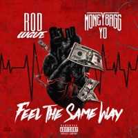 Feel the Same Way (feat. Moneybagg Yo) - Single - Rod Wave mp3 download