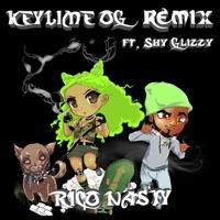 Key Lime OG (feat. Shy Glizzy) [Remix] - Single - Rico Nasty mp3 download