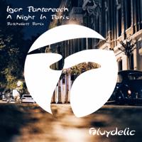 A Night in Paris (Rotchellett Remix) Igor Pantereech