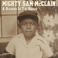 When the Hurt Is Over Mighty Sam McClain
