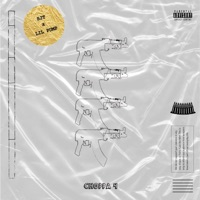 Choppa 4 (feat. Lil Pump) - Single - Remember SJT mp3 download