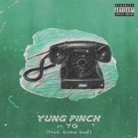 Big Checks (feat. YG) - Single - Yung Pinch mp3 download
