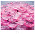Free Download Aimer Ref:Rain Mp3