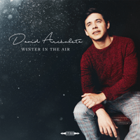 Christmas Every Day David Archuleta