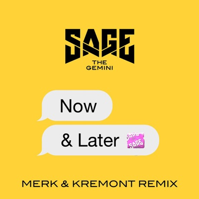 Now And Later (Merk & Kremont Remix) - Sage The Gemini mp3 download