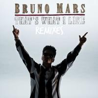 That's What I Like (Alan Walker Remix) - Single - Bruno Mars mp3 download