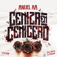 Ceniza En Cenicero - Single - Anuel AA mp3 download