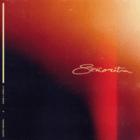 Shawn Mendes & Camila Cabello - Señorita Mp3 Download