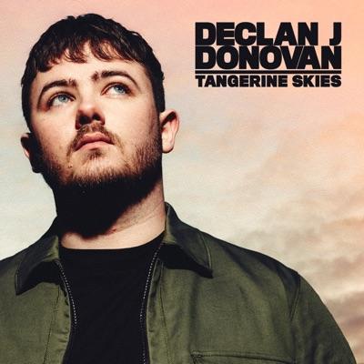 Tangerine Skies - Declan J Donovan mp3 download