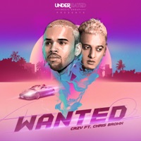 Wanted (feat. Chris Brown) - Single - CRZY mp3 download