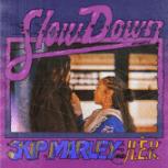 Slow Down (Acoustic) - Skip Marley & H.E.R.