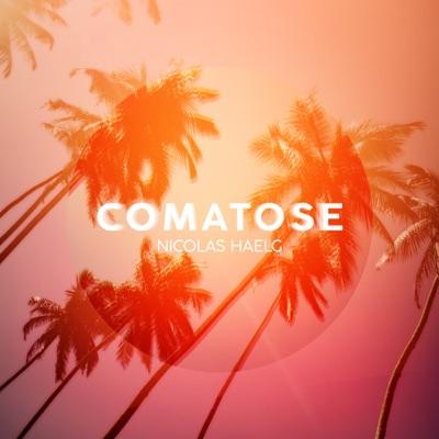 Comatose - Nicolas Haelg mp3 download