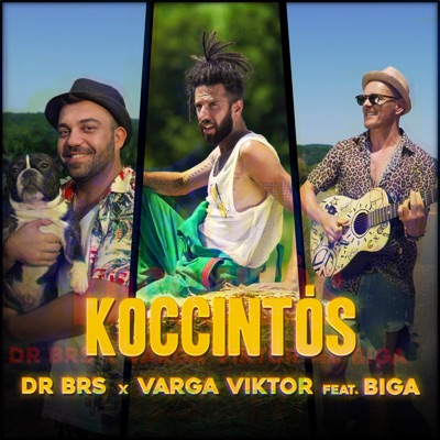 Koccintós - Dr BRS & Varga Viktor Feat. Biga mp3 download