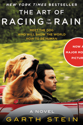 The Art of Racing in the Rain - Garth Stein