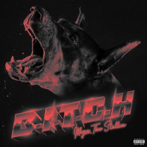 B.I.T.C.H. - B.I.T.C.H. mp3 download