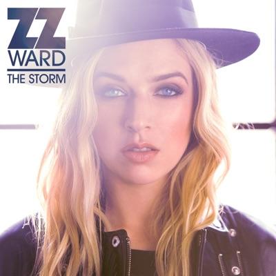 Domino (Lars Stalfors Mix) - ZZ Ward Feat. Fitz mp3 download