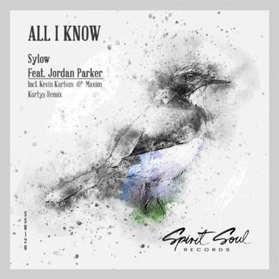 All I Know (Maxim Kurtys & Kevin Karlson Remix) - Sylow & Jordan Parker mp3 download