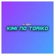 download lagu Dj Desa Kimi No Toriko