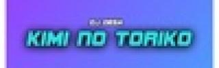 Dj Desa - Kimi No Toriko