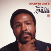 Marvin Gaye - You're the Man  artwork