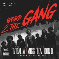 Word 2 the Gang (feat. Don Q) - Single - tv balla & Migg Flea mp3 download