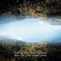 Have You (The island song) [With Trisouls] - Single - Tout Va Bien