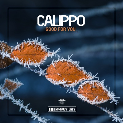 Good For You (Original Club Mix) - Calippo mp3 download