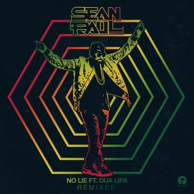 No Lie (Sam Feldt Remix) - Sean Paul Feat. Dua Lipa mp3 download