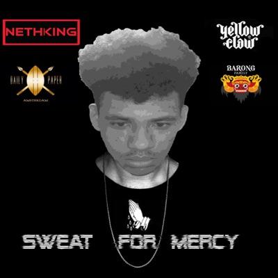 679 (SFM Remix) - Nethking mp3 download