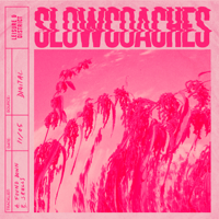Found Down Slowcoaches MP3